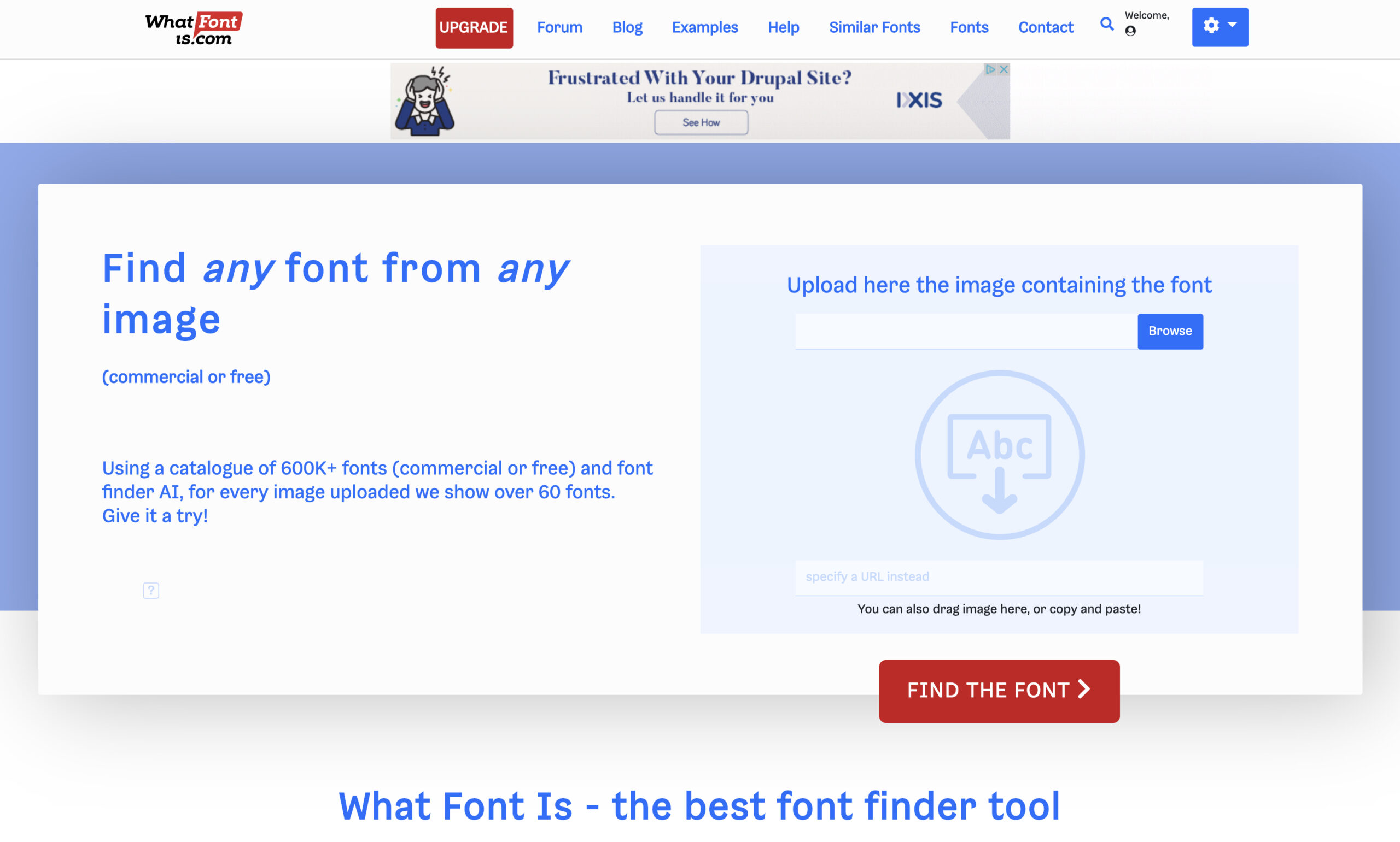 typography tool for designers
