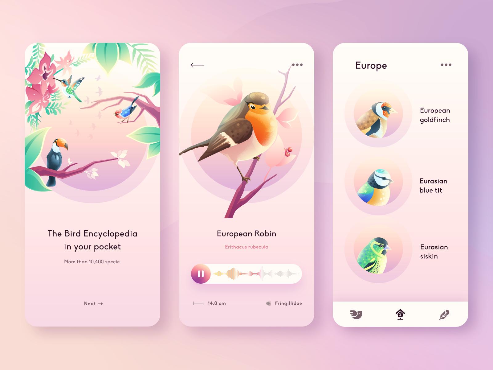 birds guide app design